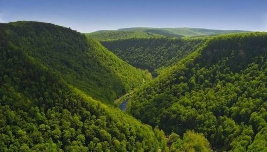 pine_creek_gorge_PA