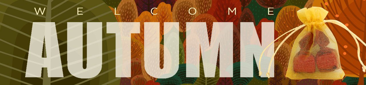 Autumn2020_occasion2b
